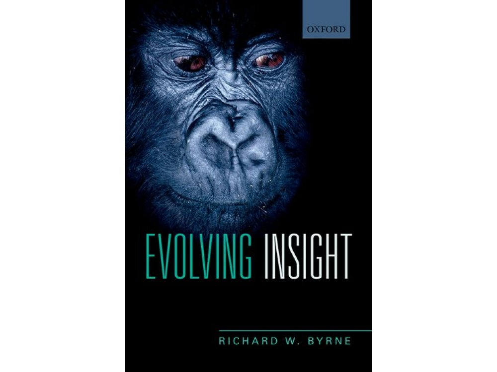 Evolving Insights: How It Is We Can Think About Why Things Happen