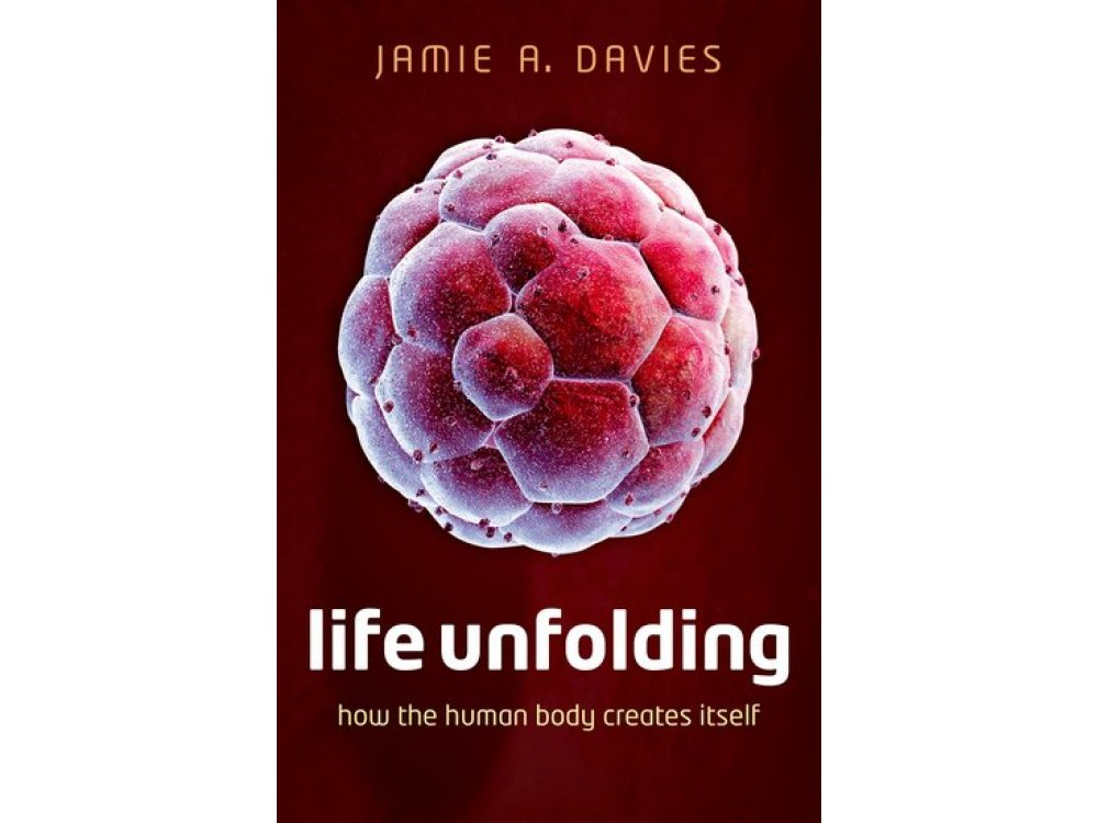 Life Unfolding : How the Human Body Creates Itself