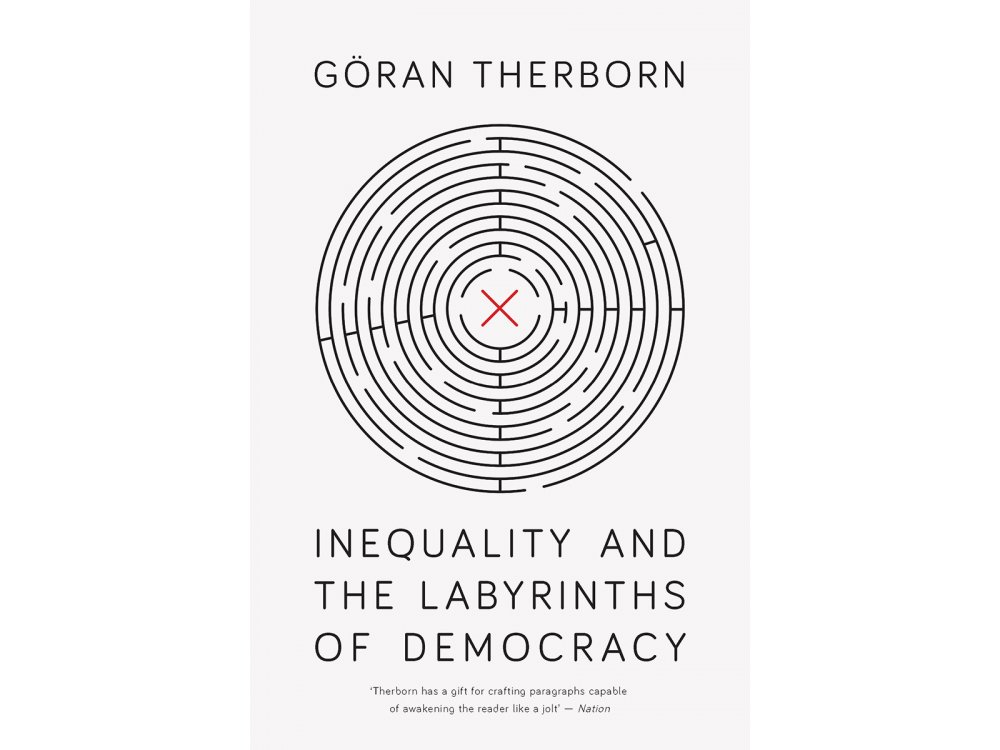 Inequality and the Labyrinths of Democracy