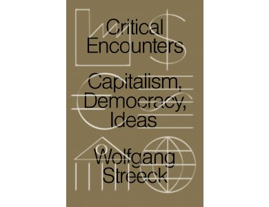 Critical Encounters: Capitalism, Democracy, Ideas