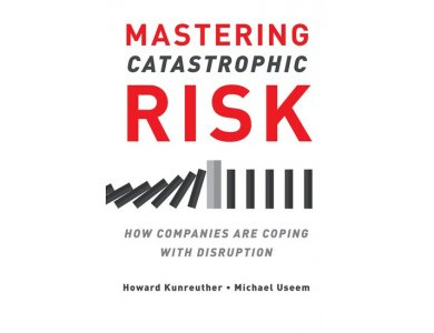 Mastering Catastrophic Risk: How Companies Are Coping with Disruption