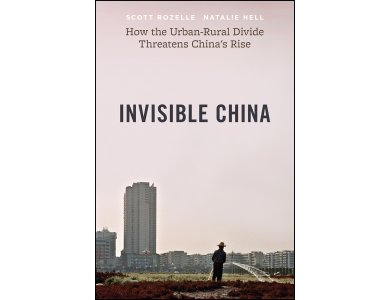 The Invisible China: How the Urban-Rural Divide Threatens China's Rise