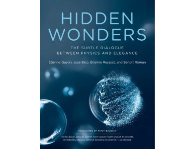Hidden Wonders: The Subtle Dialogue Between Physics and Elegance