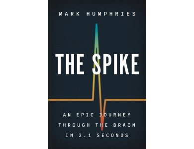Spike: An Epic Journey Through the Brain in 2.1 Seconds