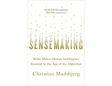 Sensemaking: What Makes Human Intelligence Essential in the Age of the Algorithm