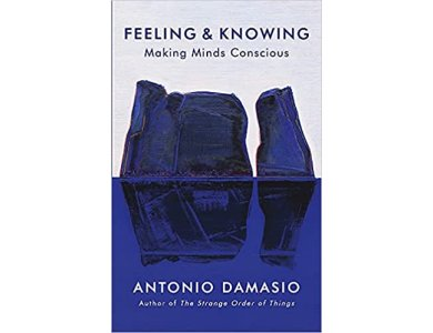 Feeling and Knowing: Making Minds Conscious