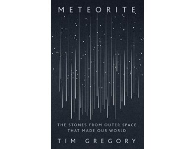 Meteorite: The Stones From Outer Space That Made Our World