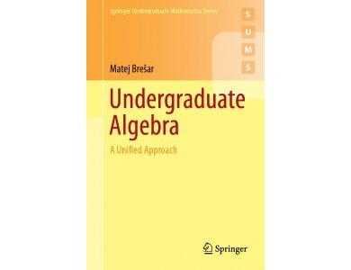 Undergraduate Algebra: A Unified Approach