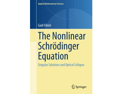 Nonlinear Schrodinger Equation: Singular Solutions and Optical Collapse